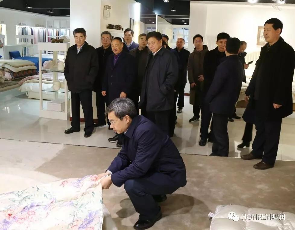 安徽省委常委、常务副省长邓向阳到鸿润视察