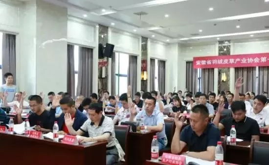 安徽省羽绒皮草产业协会成立,夏吉国总裁任第一届理事会顾问